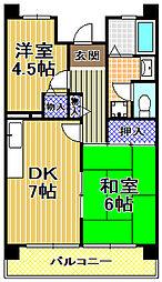 サンラフレ出来島3号棟[2階]の間取り