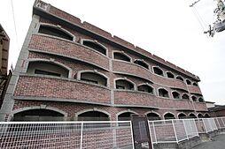 ステラハウス12[2階]の外観