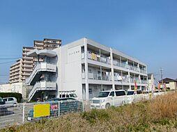 グレース尾崎[1階]の外観