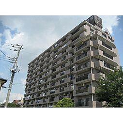 キャッスル土浦[9階]の外観