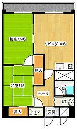メゾンド村井[502号室]の間取り
