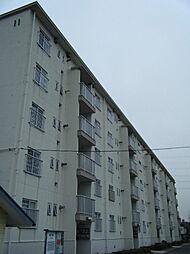 東本郷[5F号室]の外観