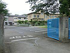 まりあ幼稚園(約700m)