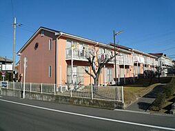 祇園ガーデンハウス[B1号室]の外観