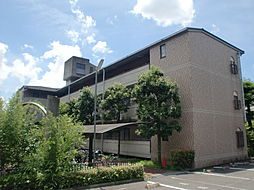 ハーミテージ安朱[1階]の外観
