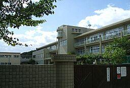 芦屋市立山手小学校(124m)