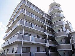 ファイブ グレース[5階]の外観