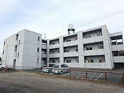 旭マンション[1階]の外観