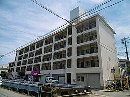 西甲子園ハイツ[4階]の外観