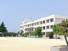 蓮池小学校…約750m