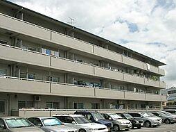 マンショングランドモナーク[3階]の外観