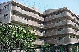 サニープレイス・アオヤマ[4階]の外観