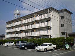 新栄ビル[303号室]の外観