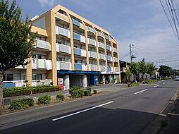 茨城県つくば市二の宮3丁目の賃貸マンションの外観