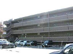広島県安芸郡坂町北新地2丁目の賃貸マンションの外観