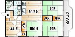 福岡県北九州市若松区栄盛川町の賃貸マンションの間取り
