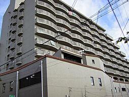 夙川グリーンタウン[604号室]の外観