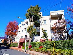 東京都練馬区下石神井3丁目の賃貸マンションの外観