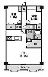 タイガーアネックスマンション[206号室]の間取り