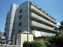 OTOGIKU(乙菊オトギク)[203号室]の外観