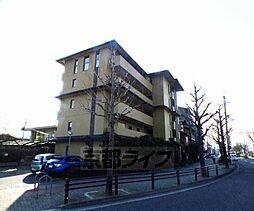 京都府京都市左京区上高野仲町の賃貸マンションの外観