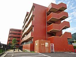グレースシノキ[5階]の外観