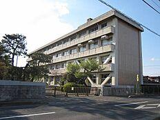 水戸第五中学校まで900m