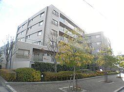兵庫県芦屋市朝日ケ丘町の賃貸マンションの外観