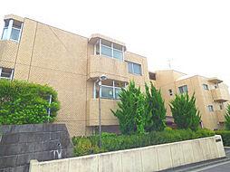 大黒屋レヂデンス[4階]の外観
