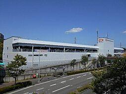 [一戸建] 神奈川県横浜市都筑区南山田3丁目 の賃貸【/】の外観