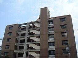 トリニティ加美東[4階]の外観