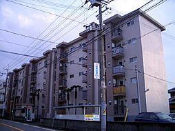 綾園団地[4階]の外観