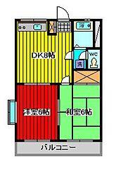 埼玉県川口市弥平1丁目の賃貸マンションの間取り