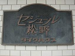 セジュール松野[202号室]の外観
