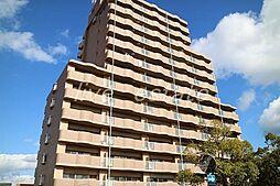 アメニティハイツ14[5階]の外観