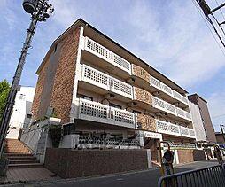 京都府京都市伏見区向島中島町の賃貸マンションの外観