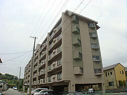 ルネ東辻井[407号室]の外観