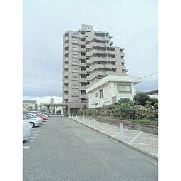 サーパス庄栄町[8階]の外観
