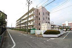 都府楼ガーデンハイツ[205号室]の外観