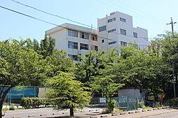 知多市立八幡中学校 徒歩 約19分(約1500m)