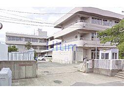 [一戸建] 京都府京都市伏見区日野野色町 の賃貸【/】の外観