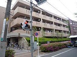 ビューテラス東新町[3階]の外観