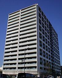 神奈川県川崎市幸区新川崎の賃貸マンションの外観