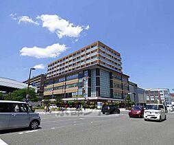 京都府京都市中京区西ノ京東栂尾町の賃貸マンションの外観