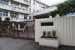 新城市立千郷中学校(1480m)