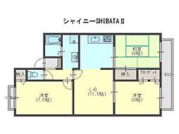 シャイニーSHIBATAII[2階]の間取り