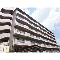 大阪府寝屋川市田井西町の賃貸マンションの外観