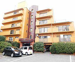 京都府京都市山科区東野八反畑町の賃貸マンションの外観