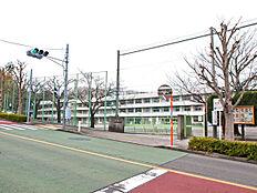 町田市立金井小学校まで1244m