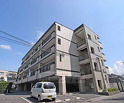京都府京都市伏見区中島樋ノ上町の賃貸マンションの外観